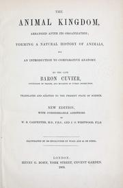 Cover of: The animal kingdom