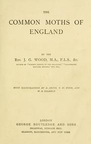 Cover of: The common moths of England
