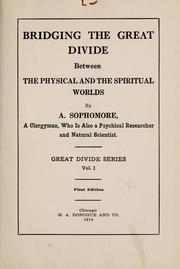Cover of: Bridging the great divide between the physical and the spiritual worlds | A. Sophomore