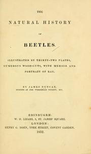 Cover of: natural history of beetles | Duncan, James