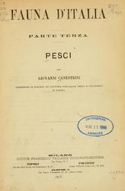 Cover of: Pesci
