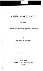 Cover of: A New Mexico David