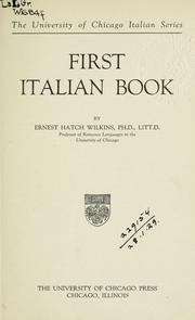 Cover of: First Italian book