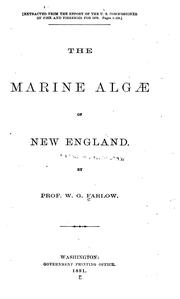 Cover of: The Marine Algae of New England and Adjacent Coast | William Gilson Farlow
