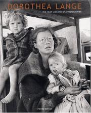 Cover of: Dorothea Lange