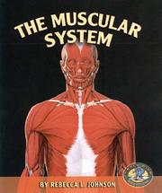 Cover of: The Muscular System (Early Bird Body Systems)