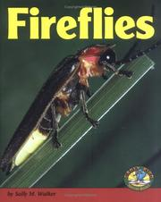 Cover of: Fireflies