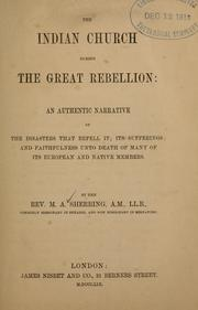 Cover of: The Indian church during the Great Rebellion