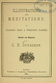 Cover of: Illustrations and meditations