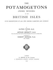 Cover of: potamogetons (pond weeds) of the British Isles | Alfred Fryer