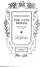 Cover of: The cats' bridge: Translated from the German.