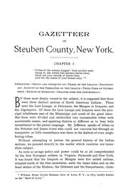 Cover of: Historical gazetteer of Steuben County, New York, with memoirs and illustrations. | Millard Fillmore Roberts