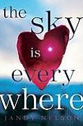 Cover of: The sky is everywhere