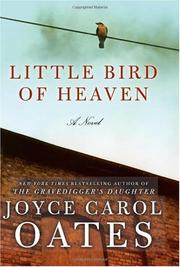 Cover of: Little Bird of Heaven: A Novel