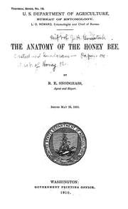 Cover of: The anatomy of the honey bee by R. E. Snodgrass