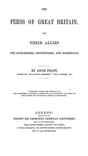Cover of: The ferns of Great Britain, and their allies the club-mosses, pepperworts, and horsetails | Pratt, Anne