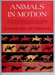 Cover of: Animals in motion | Eadweard Muybridge