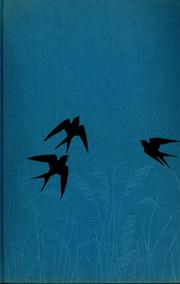 Cover of: The bird watcher