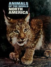 Cover of: Animals of the world: North America | by Eric Powell [and others]