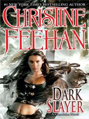 Cover of: Dark slayer: a Carpathian novel