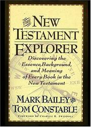 Cover of: The New Testament explorer