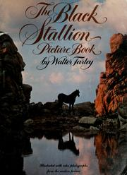 Cover of: The black stallion picture book | Walter Farley