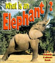Cover of: What is an elephant?