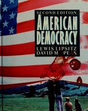 Cover of: American democracy | Lewis Lipsitz