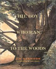 Cover of: The boy who ran to the woods