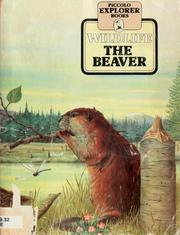 Cover of: The Beaver (Piccolo Explorer Books) | Angela Sheehan, Graham Allen