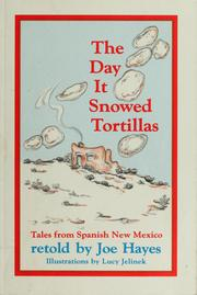 The day it snowed tortillas