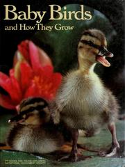 Cover of: Baby birds and how they grow | Jane R. McCauley