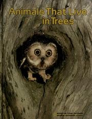 Cover of: Animals that live in trees | Jane R. McCauley