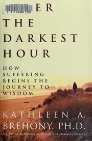Cover of: After the Darkest Hour | Kathleen A. Brehony