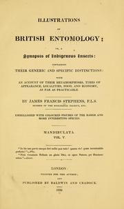 Cover of: Illustrations of British entomology | James Francis Stephens