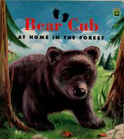 Cover of: Bear cub