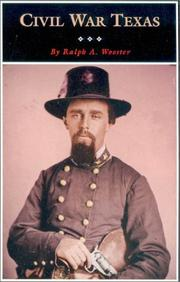 Cover of: Civil War Texas: a history and a guide