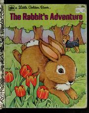 Cover of: The rabbit's adventure