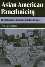 Cover of: Asian American panethnicity