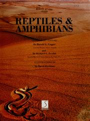 Cover of: Reptiles & amphibians | consultant editors, Harold G. Cogger and Richard G. Zweifel ; illustrations by David Kirshner.