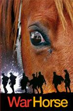 Cover of: War Horse