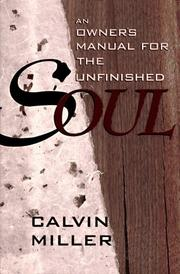 Cover of: An Owner's Manual for the Unfinished Soul