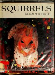 Cover of: Squirrels | Brian Wildsmith