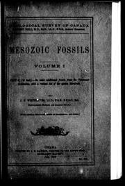 Cover of: Mesozoic fossils | J. F. Whiteaves