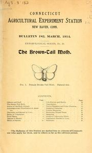 Cover of: The brown-tail moth, Euproctis chrysorrhoea Linn | Wilton Everett Britton