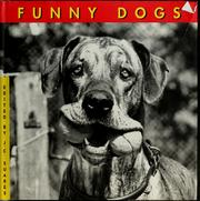 Cover of: Funny dogs | Jean-Claude Suarès, Jane Martin