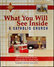 Cover of: What You Will See Inside a Catholic Church (What You Will See Inside) | Michael Keane