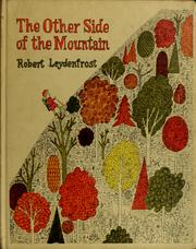 Cover of: The other side of the mountain | Robert J. Leydenfrost