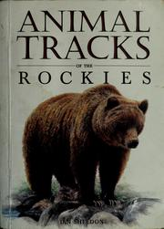 Cover of: Animal tracks of the Rockies