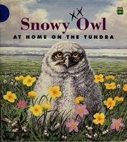 Cover of: Snowy owl